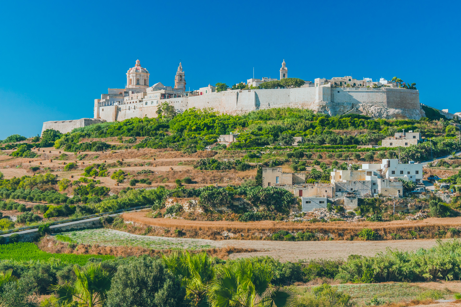 Mdina Walking Tour - Discover the Silent City - Malta Tours
