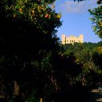 Verdala Malta - Sightseeing Trips