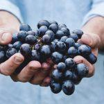 Wine Tasting Malta - Night Tours in Malta and Gozo