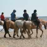 Horse Riding Activities Malta