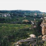 Malta's Nature - Explore Malta