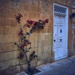 Malta Sightseeing Tours and Trips - Day and Night